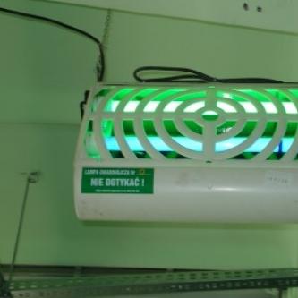 Lampy flytrap industrial